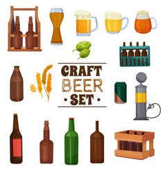 craft beer set vector image