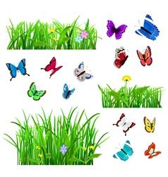 Green grass and butterflies vector