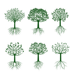 set green trees with roots vector image
