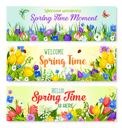 spring flowers banners for holiday greeting vector image