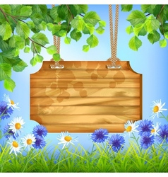 Wooden Sign Board Summer Day Natural Background vector image