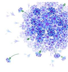 caltrop blooming vector image vector image