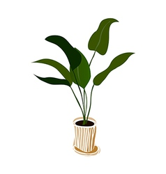 A plant is placed vector image