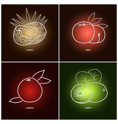CoconutGrapefruit PeachKiwifruit vector