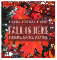 Fall quote vector