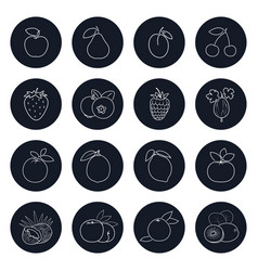 Line icons of fruits and berrys vector