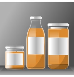 Set of transparent glass or plastic orange vector