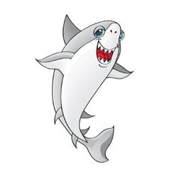 Shark on white background vector image