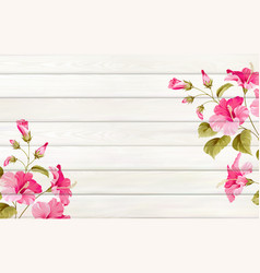 Tropical background for your design hibiscus vector