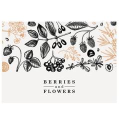Wild berries and flowers background seasonal vector