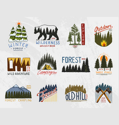 camp logo mountains coniferous forest and wooden vector image