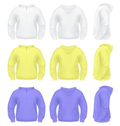 Mens Sweater with Hoodie vector image