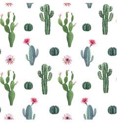 beautiful watercolor cactus seamless vector image