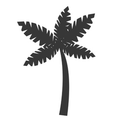 black beach palm tree graphic vector image