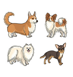 dogs different breeds in color set6 vector image