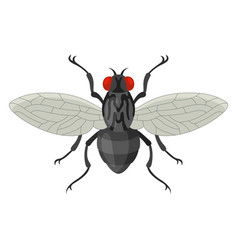 fly icon small black insect with wing vector image