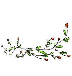 hand drawn wild flowers for vector image