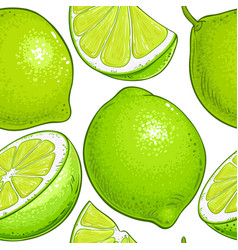 lime fruits pattern on white background vector image