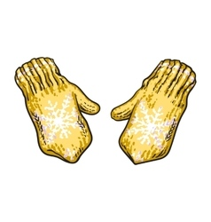 Pair of bright yellow winter knitted mittens with vector