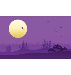 Purple backgrounds silhouette of witch and vector