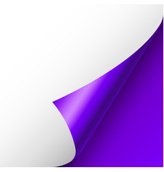 Violet paper curl curled page corner with shadow vector