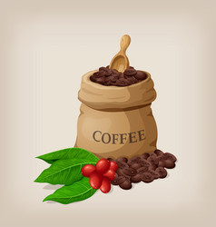 coffee bag with beans in canvas sack and coffee vector image