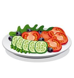 Fresh salad vector