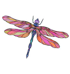 colorful dragonfly with boho pattern elemen vector image