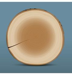 Cross section tree stump vector