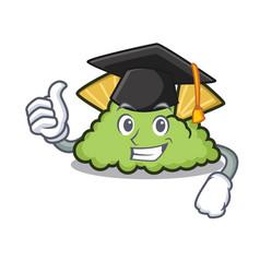 Graduationgraduation guacamole character cartoon vector