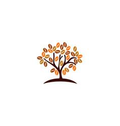 plant coffee logo icon design vector image