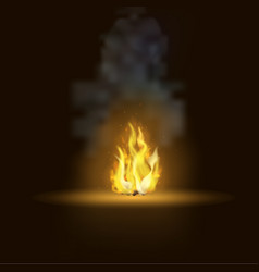 Realistic bonfire with smoke vector