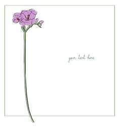 freesia minimal card vector image vector image