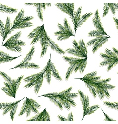 Seamless pattern with spruce or pine branches vector image vector image