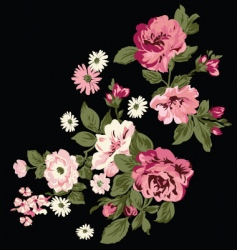 classic roses vector image