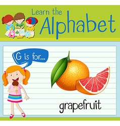 Flashcard alphabet G is for grapefruit vector