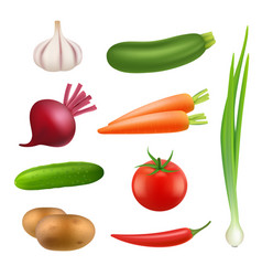 fresh vegetables products healthy vegan vector image