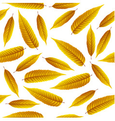 golden rowan leaves isolated on white background vector image