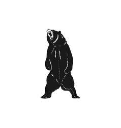 Grizzly bear silhouette shape distressed wild vector