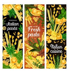 Pasta and spaghetti with italian spice herbs vector