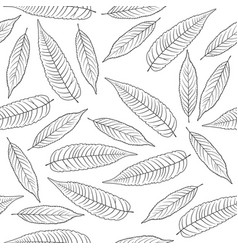 autumn leaves a white background vector image