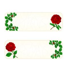 Banner cracks in the porcelain and rose vintage vector
