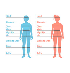Boy and girl size chart human front side vector