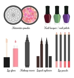 Cosmetics for a make-up set 3 vector image