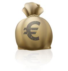 Euro sack vector