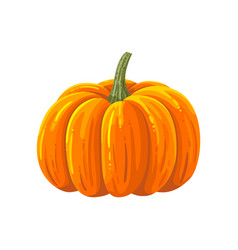 pumpkin cartoon vector image