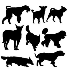 set silhouette black dog on a white background vector image