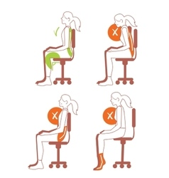 Sitting positions correct spine posture vector image