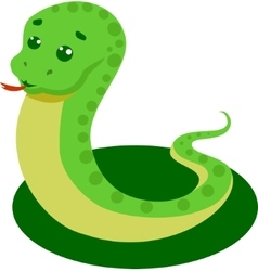 Snake On A White Background vector image