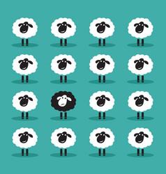 single black sheep in white sheep group animal vector image